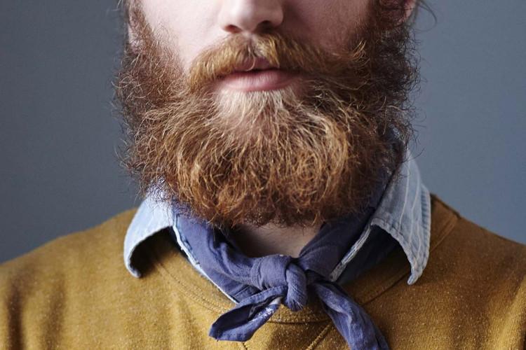 Có những bộ râu chứa lượng vi khuẩn lớn đến mức không thể tưởng tượng.