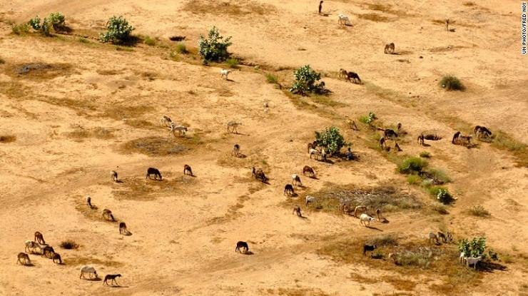 Hệ sinh thái và tài nguyên thiên nhiên của Sudan, một quốc gia ở Bắc Phi, đang bị thoái hóa.