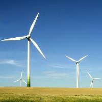 Tuabin gió giúp cây trồng phát triển tốt hơn