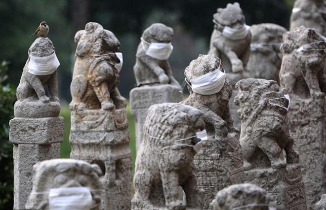 Các sinh viên cho biết họ tự bỏ khoảng vài chục nhân dân tệ để đeo đủ 800 khẩu trang cho các bức tượng đá.