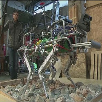 Italy phát triển loại robot bốn chân cho các vùng bị thảm họa