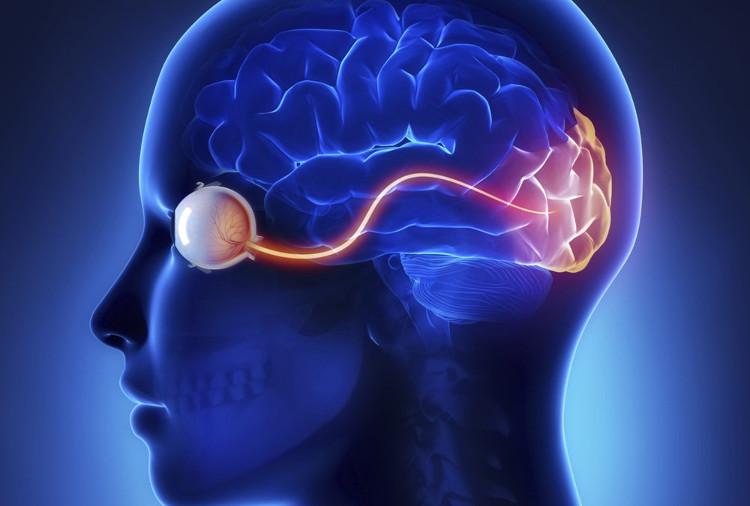 Mất thị lực sau tai nạn chấn thương não là khá phổ biến.