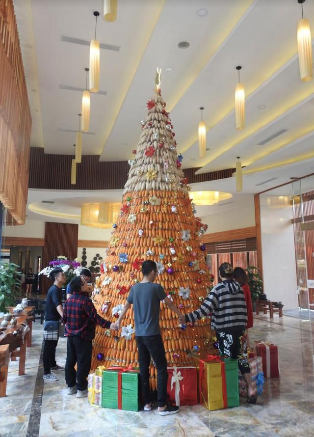 Cây thông Giáng sinh làm từ 3.600 trái bắp ở thành phố Hòa Bình.