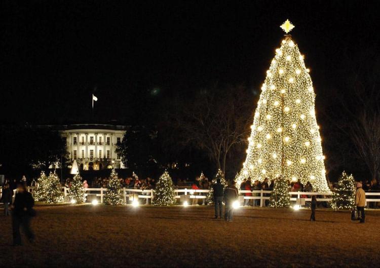 Cây thông Giáng sinh bên ngoài khuôn viên của Nhà Trắng, bang Washington, Mỹ.