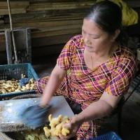 Thăm những làng nghề làm mứt Tết truyền thống nổi tiếng Việt Nam