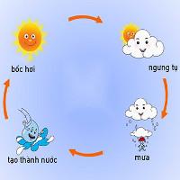 Khi nào những đám mây sẽ biến thành mưa?