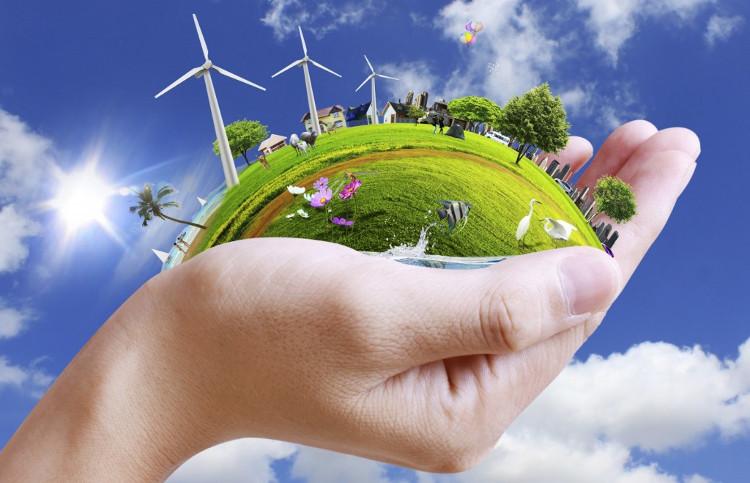 Tận dụng ánh sáng mặt trời, bạn sẽ giảm được lượng điện năng tiêu thụ, đồng thời tiết kiệm được túi tiền của mình.