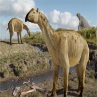 """Hóa thạch """"con lai"""" voi và ngựa ba triệu năm tuổi"""