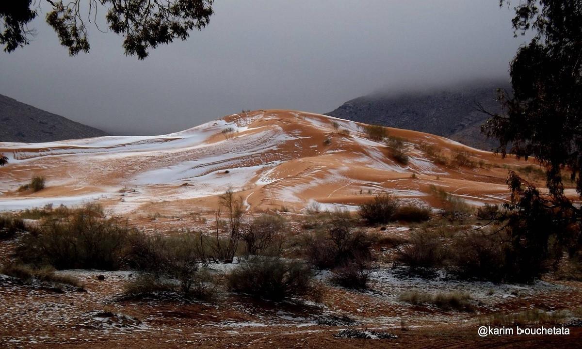 Bouchetata cho biết ông rất bất ngờ khi thấy tuyết rơi trên sa mạc.