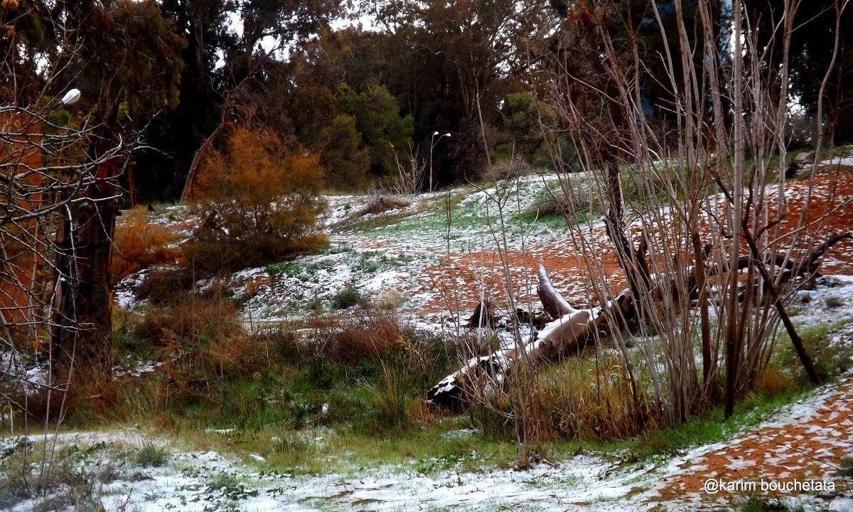 Bouchetata cho biết cảnh tuyết rơi trông rất tuyệt vời khi bám vào những cồn cát màu cam tươi sáng, mang đến cơ hội hoàn hảo để chụp ảnh.