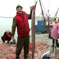 """Ngư dân Trung Quốc bắt được lươn """"khủng"""" dài gần 2m"""