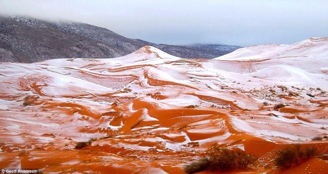 Bức ảnh do nhiếp ảnh gia Karim Bouchetata chụp lại cảnh tuyết rơi ở sa mạc Sahara gần thị trấn Ain Sefra.