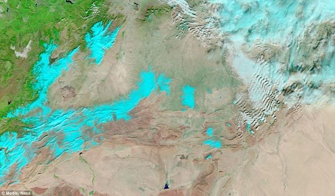 Ảnh vệ tinh chụp ngày 21/12 cho thấy vùng có tuyết phủ là khu vực được tô màu xanh dương nhạt.