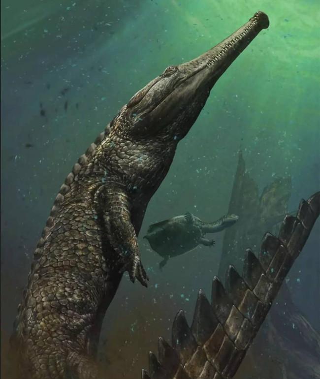 Minh họa về loài cá sấu biển Machimosaurus rex.