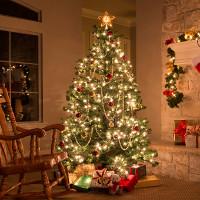Nguồn gốc và ý nghĩa của cây thông Noel