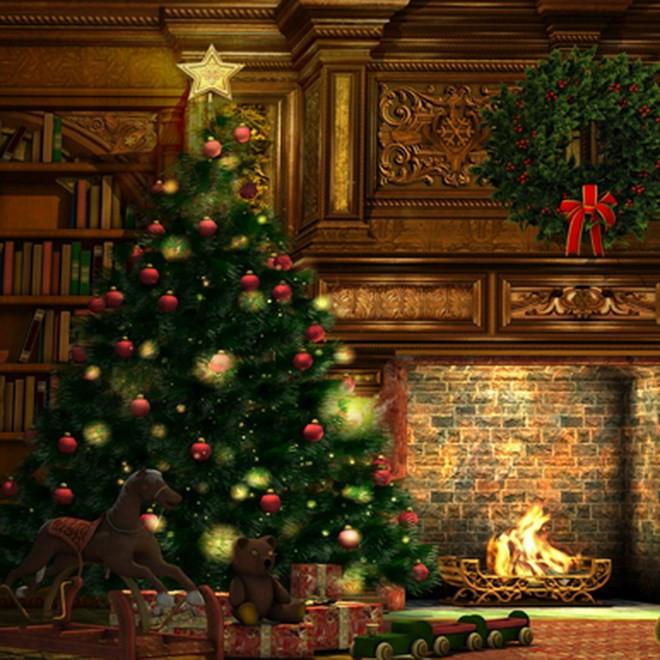 Cây thông Noel.