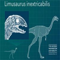 Loài khủng long rụng sạch răng khi trưởng thành