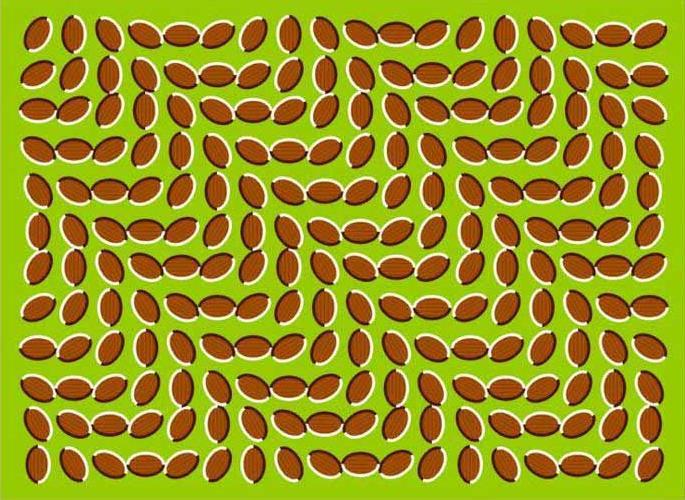 Các hình vẽ trong bức ảnh dường như đang chuyển động.