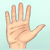 Hình dáng bàn tay có thể nói lên tính cách của một người