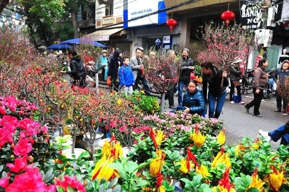 Dù Tết xưa hay tết nay, những loại hoa và cây cảnh may mắn dịp Tết vẫn được người dân ưa chuộng.