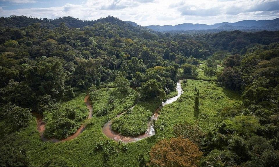 Một nhóm nhà thám hiểm và khảo cổ học quốc tế phải đương đầu với một căn bệnh chết người khi tìm kiếm thành phố thất lạc của thần Khỉ