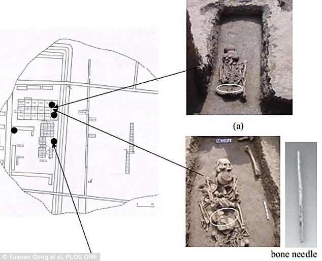 Ngôi mộ 8.500 năm tuổi mang bằng chứng về việc sử dụng tơ lụa của người cổ đại.