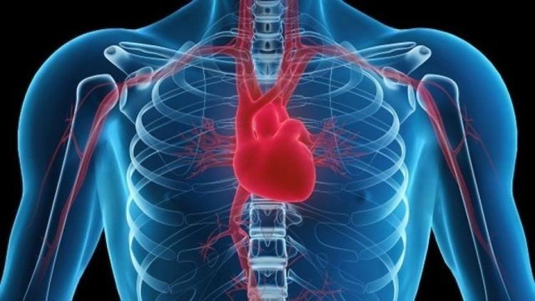 Nghiên cứu chỉ ra rằng cứ 1 triệu người thì sẽ có khoảng 34 người mang nguy cơ mắc ung thư tim.