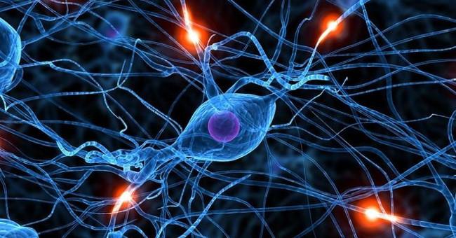 Sức khỏe đời sống-Triển khai liệu pháp tế bào trong điều trị bệnh ung thư