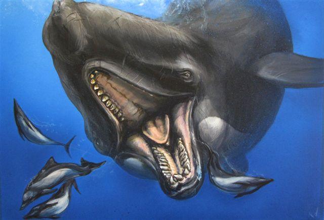 Livyatan Melvillei - cá voi ăn thịt được cho là cạnh tranh được với Megalodon.