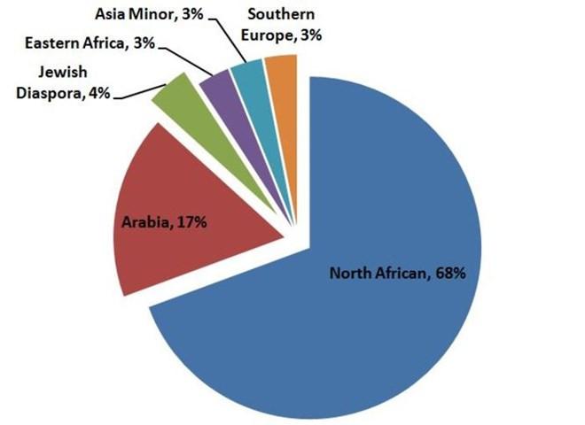 Theo nghiên cứu, chỉ có 17% người Ai Cập là gốc Arab.