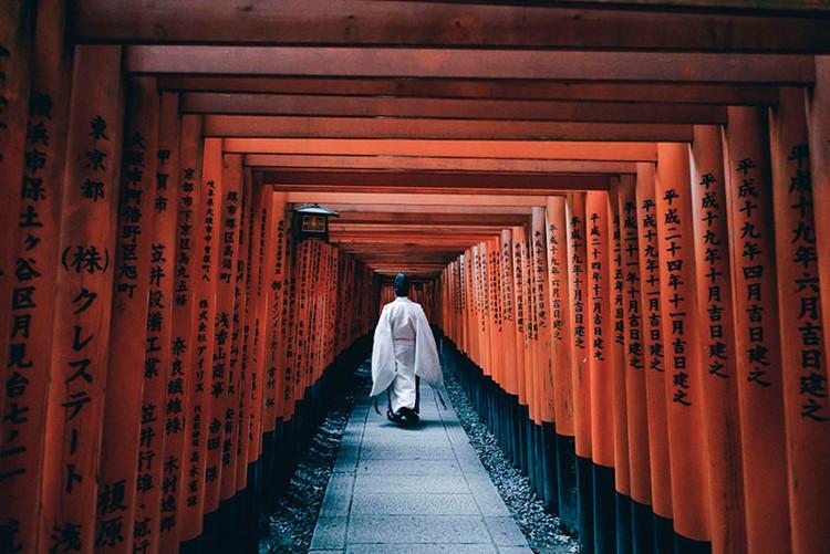 Nhật Bản: chỉ số IQ trung bình 105 điểm