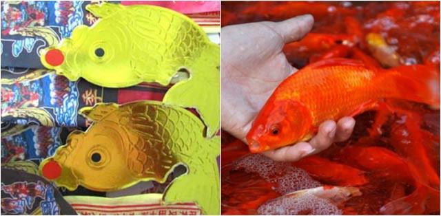 Nếu đã cúng cá chép giấy thì thôi cá chép sống và ngược lại.