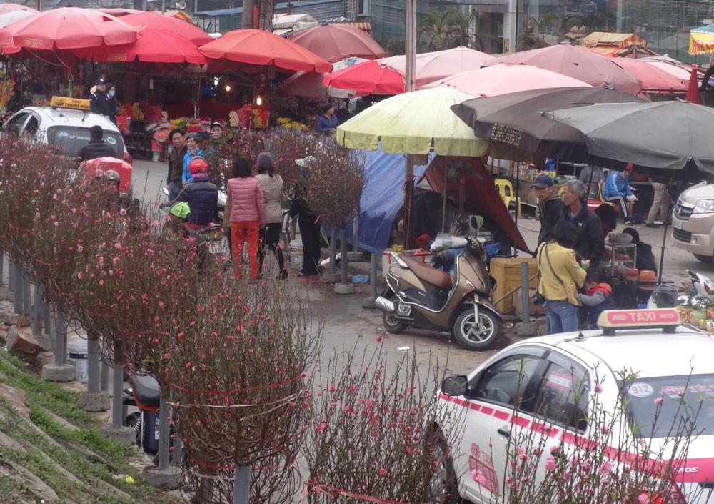 Chợ không chỉ hút khách là người dân nội thành mà còn cả những người thuộc các tỉnh lân cận