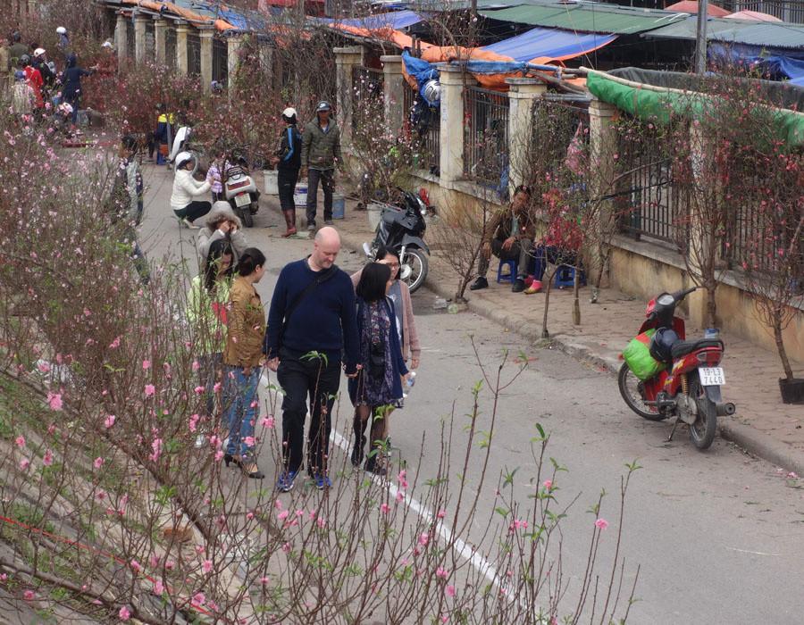 Khách nước ngoài đến du ngoạn chợ hoa để cảm nhận sắc xuân tràn ngập.