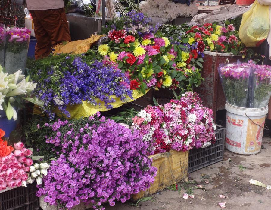 Ngoài ra, trong chợ cũng bán rất nhiều loại hoa khác như: thược dược, cúc, hồng, ly,... cho khách thỏa sức lựa chọn.