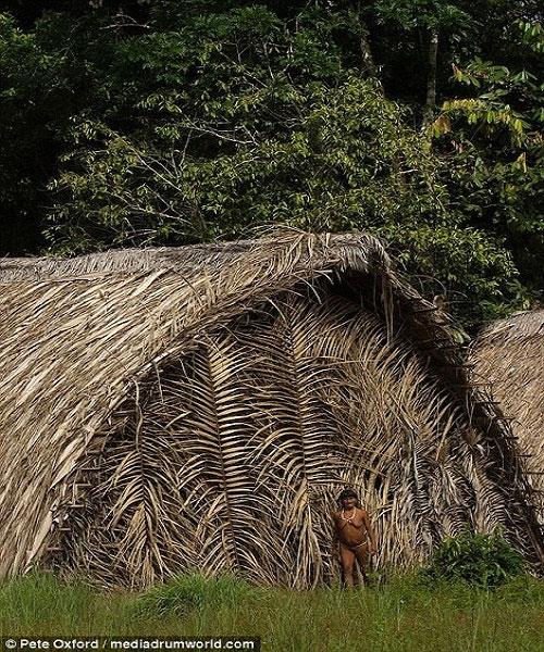 Nền văn hóa nguyên sơ của người Huaorani đang bị đe dọa