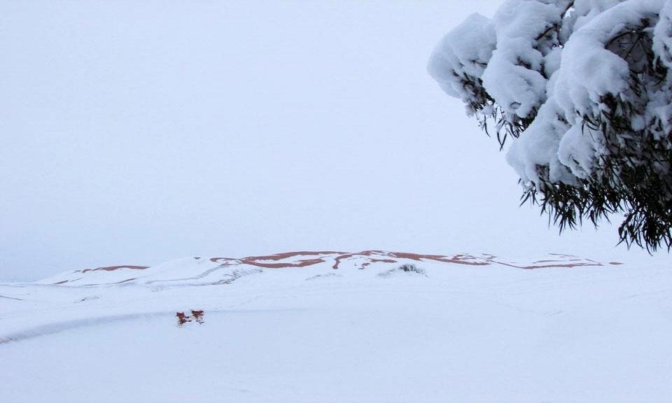 Tuyết chưa từng rơi ở thị trấn từ ngày 18/2/1979, sau trận bão kéo dài nửa tiếng.