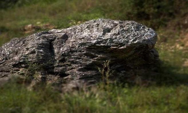 Người dân trong làng nhiều đời thờ một tảng đá có hình con cóc ở đầu làng.