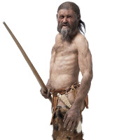 Nhiều phát hiện lạ khi mổ xẻ bữa ăn cuối cùng của người băng Otzi