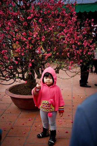 Em bé ở chùa Trấn Quốc.