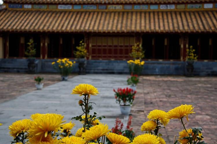 Hoa Tết ở lăng Thiệu Trị, Huế.