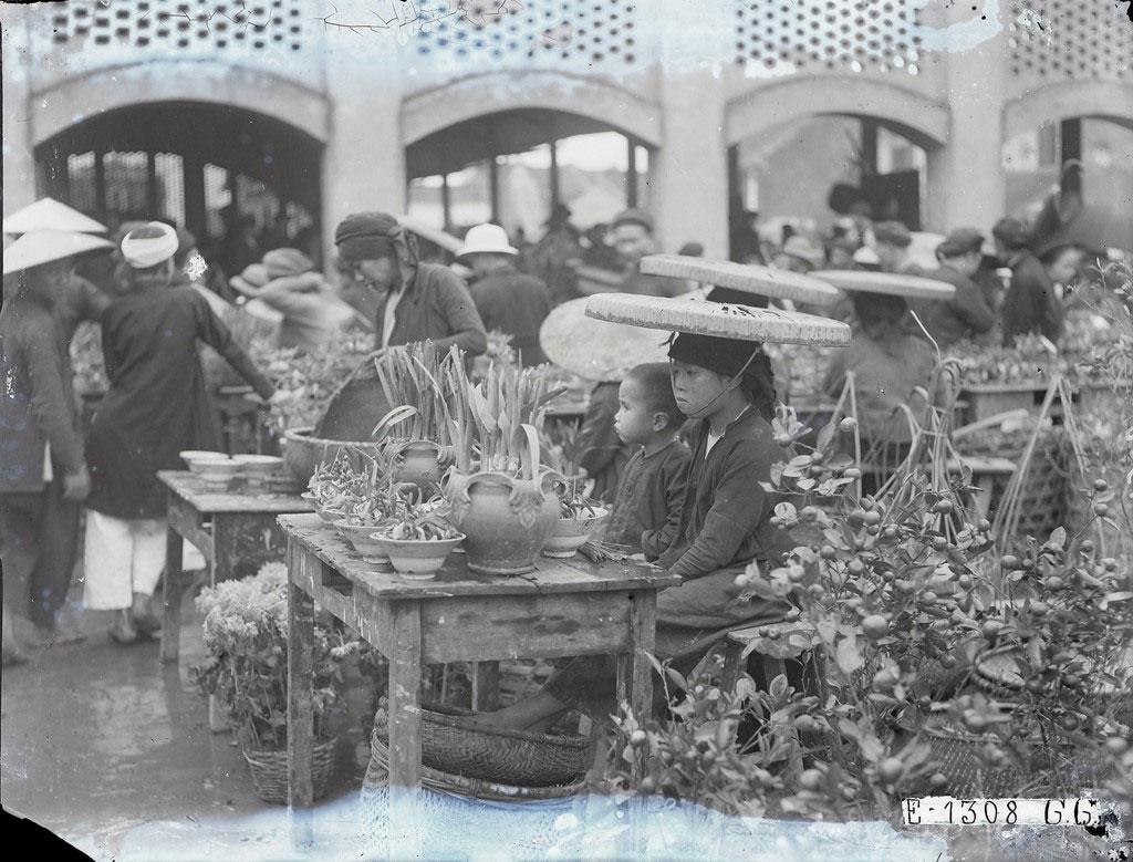 """Bên cạnh các loại thực phẩm, hàng hóa, một """"đặc sản"""" khác trong dịp Tết là các loại hoa, cây cảnh"""