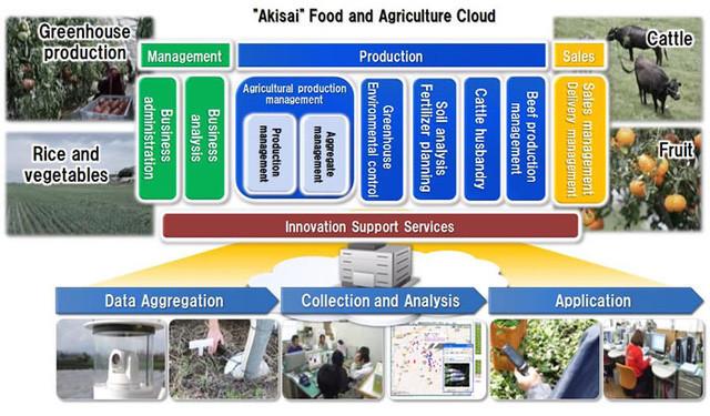 Công nghệ nông nghiệp thông minh, kết hợp nông nghiệp với điện toán đám mây.