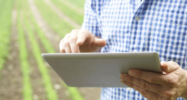 Việc ứng dụng công nghệ cao vào nông nghiệp đang trở thành vấn đề thiết yếu.
