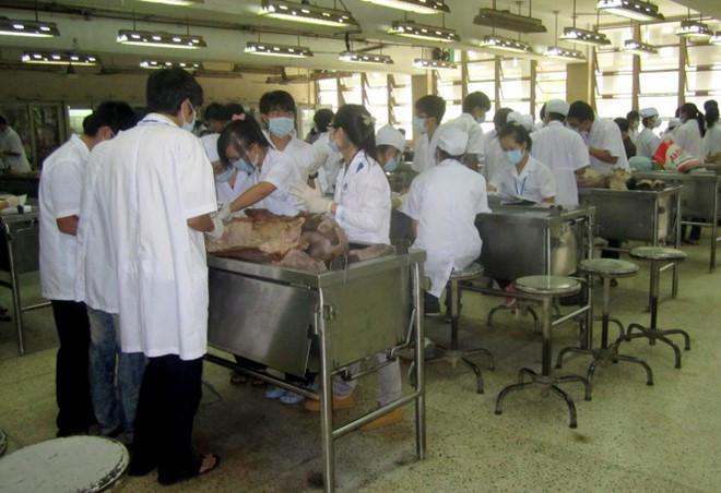 Phục vụ giảng dạy y khoa