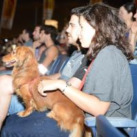 Israel có dịch vụ kỹ thuật số chăm sóc chó đầu tiên trên thế giới
