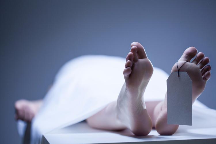 Một số tế bào vẫn còn sống và tự sửa chữa sau khi con người chết đi.