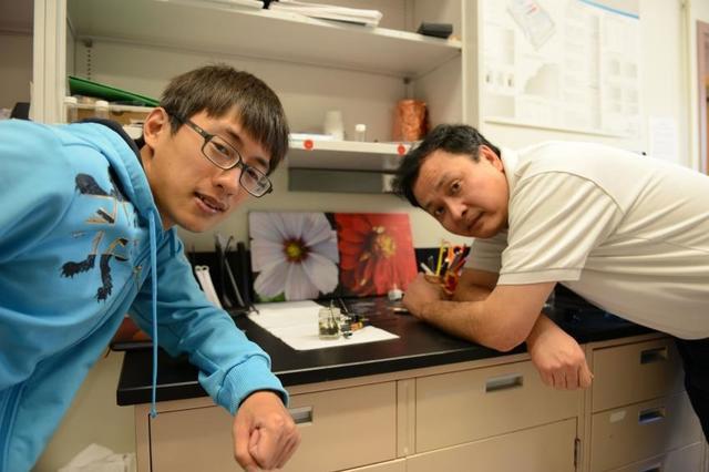 Chàng sinh viên Ming Gong (trái) và giáo sư Hongjie Dai của trường Stanford đã phát triển thành công loại pin nhôm-ion.