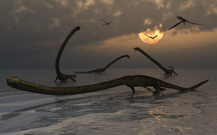 Tanystropheus sở hữu chiếc cổ dài tới 3m.