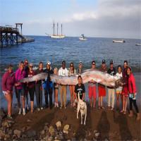 Cá mái chèo khổng lồ tiên đoán động đất ở Philippines?